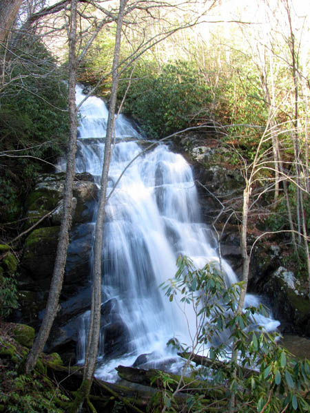 Lower Higgins Creek Falls