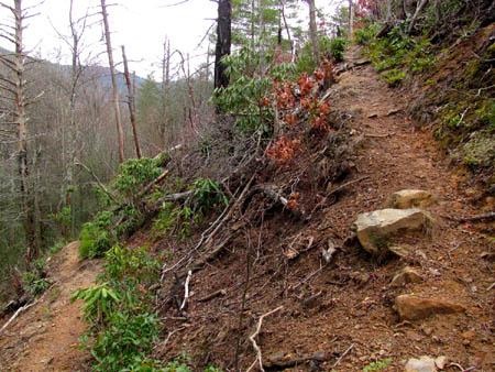 Switchback on the Rattlesnake Ridge Trail