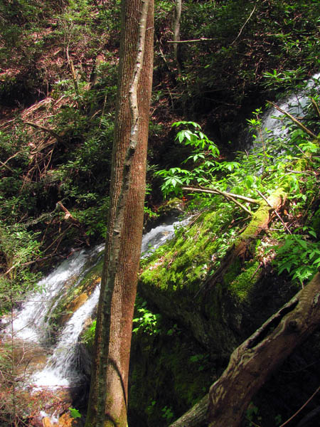 Side view of lower portion of the Upper Wilderness Falls