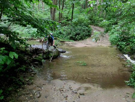 tyler creek