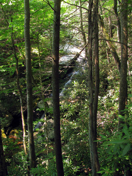 Little Lost Cove Creek Falls
