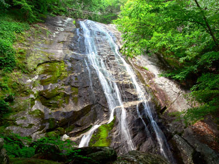 Lower Little Lost Cove Creek Falls