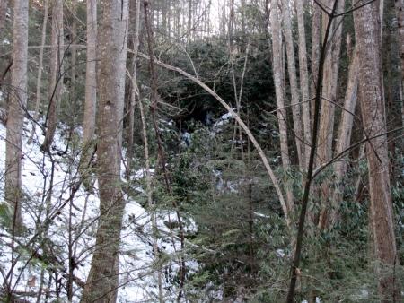 Feeder Falls near lower Simmons Br. falls