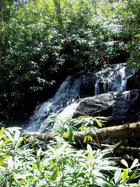 Jones Falls (upper)