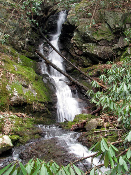 Simmons Branch Falls (lower)