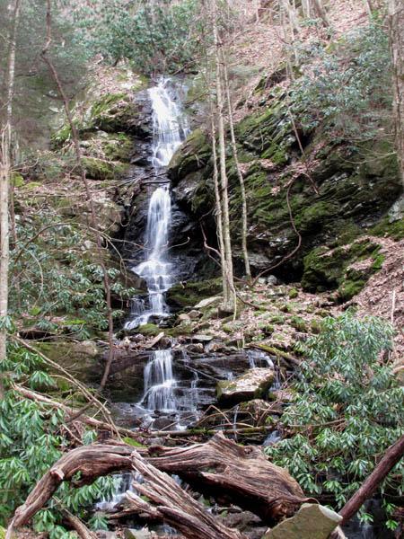 Simmons Branch Falls (upper)