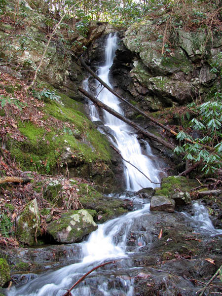 Lower Simmons Branch Falls