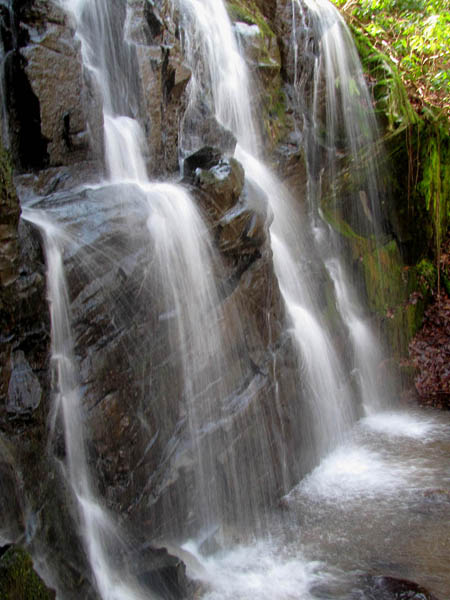 Upper part of Middle Simmons Branch Falls