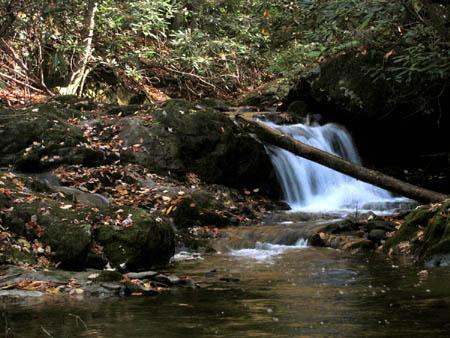 Cascades along Devil Fork Creek