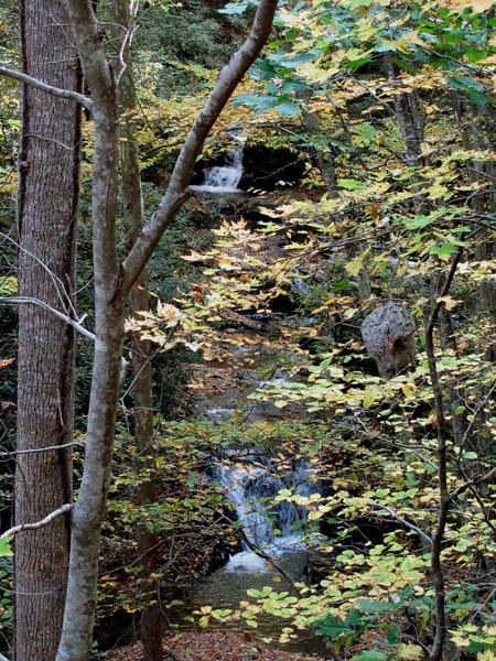 Devil Fork Falls (upper and lower)
