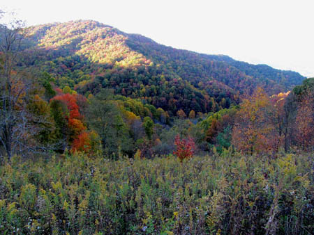 Fall colors seen from Sam's Gap