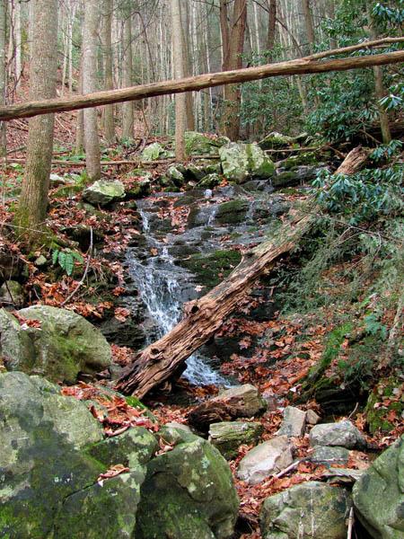 Lower Wilderness Falls