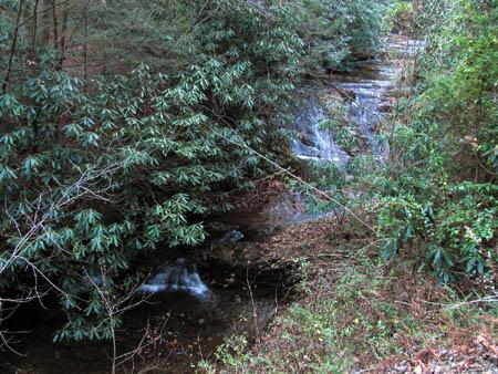 Lower Longarm Branch Falls