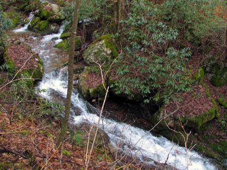 Cascades found along Longarm Branch