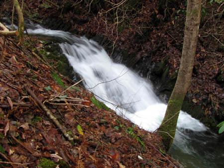 Small set of falls along Longarm Branch