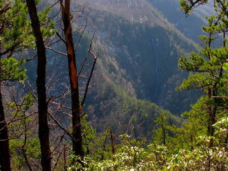 View of Buckeye Falls from Chigger Ridge
