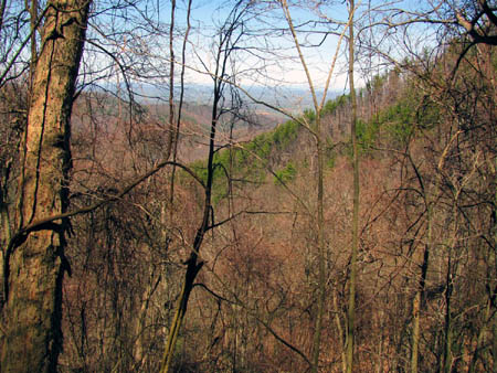 View of Nolichucky Valley