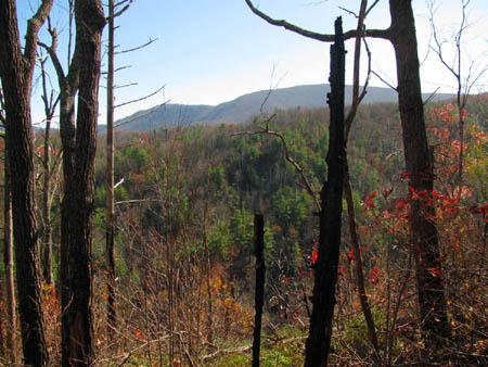 Flattop Mountain as seen over the distant ridge top