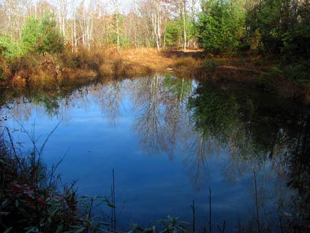 Pond on No Business Knob