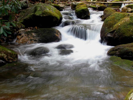 Cascades along Horse Creek