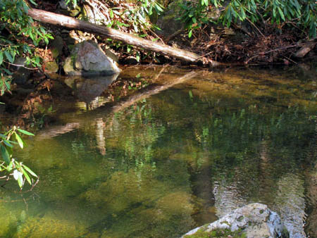 Reflections on Horse Creek