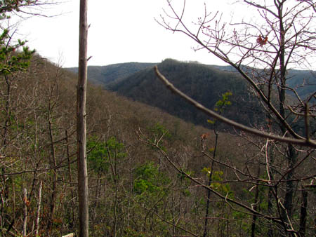 view of Coldspring Mountain