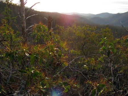 Sun setting over Middle Spring Ridge