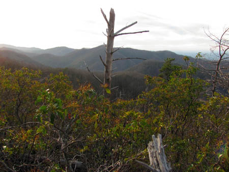 View from ridge