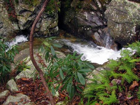 cascade above upper devils creek falls