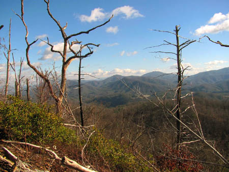 View towards No Business Knob and Flattop Mountains