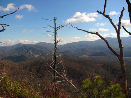 View towards Flattop Mtn. and Spivey Gap (center) with Little Bald Mtn. (right)