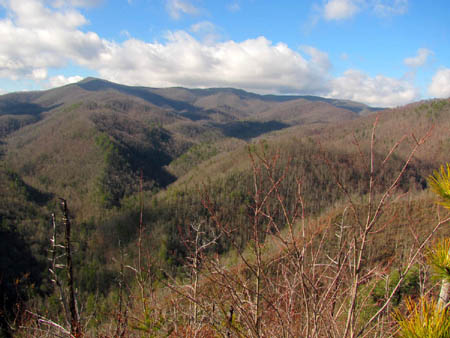 Better view of the Rocky Fork Valley towards Coldspring Mountain