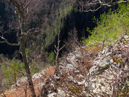 Rock ledge drop offs