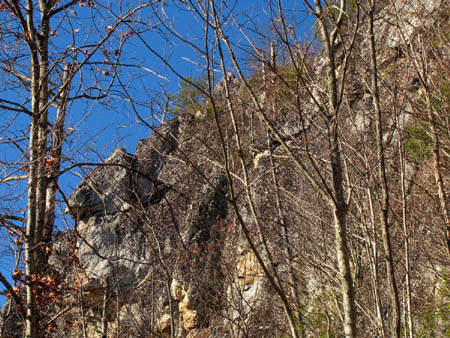Looking up at the cliffs from below