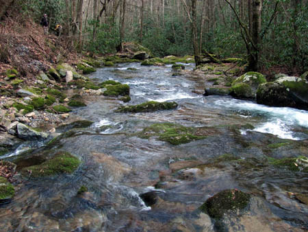 Rocky Fork Creek