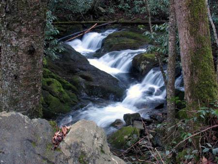 The cascades on Rocky Form Creek